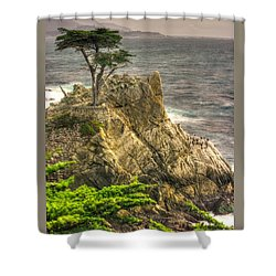Lone Cypress On The Monterey Peninsula - No. 1 Looking Across Carmel Bay Spring Mid-afternoon Shower Curtain by Michael Mazaika