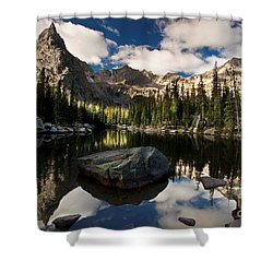 Lone Eagle  Shower Curtain by Steven Reed