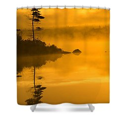 Lone Pine And Misty Lake At Dawn Shower Curtain by Irwin Barrett
