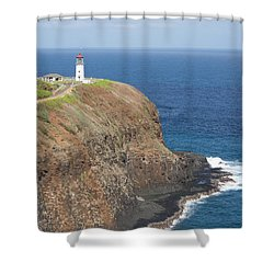 Lone Sentry Shower Curtain by Suzanne Luft