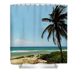 Shower Curtain featuring the photograph Lone Tree by Amar Sheow