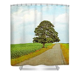 Shower Curtain featuring the photograph Lone Tree by Brooke T Ryan