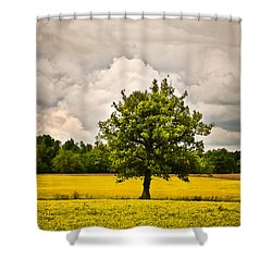 Lone Tree In Field Of Wildflowers 1b Shower Curtain by Greg Jackson