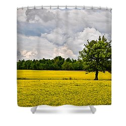 Shower Curtain featuring the photograph Lone Tree In Field Of Wildflowers by Greg Jackson