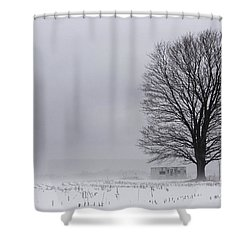 Lone Tree In The Fog Shower Curtain