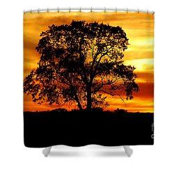Lone Tree Shower Curtain by Mary Carol Story