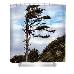 Lone Tree Shower Curtain by Melanie Lankford Photography