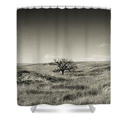 Lone Tree Winter Shower Curtain