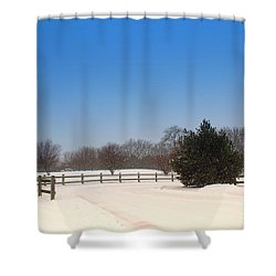 Lone Winter Evergreen  Shower Curtain