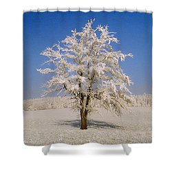 Lonely Shower Curtain by Aged Pixel