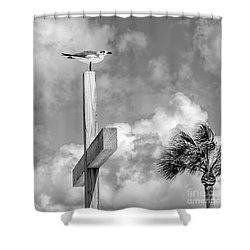 Lonely At The Top Shower Curtain by Lynn Palmer