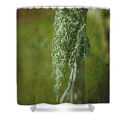 Lonely Lichen Shower Curtain by Judi Bagwell