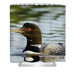 Lonely Loon Shower Curtain