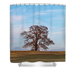 Lonely Tree Shower Curtain by Cynthia Guinn