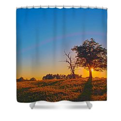 Shower Curtain featuring the photograph Lonely Tree On Farmland At Sunset by Alex Grichenko