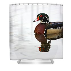 Lonely Wood Duck Shower Curtain by Karol Livote