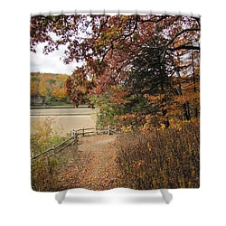 Lonesome Path Shower Curtain by Minding My  Visions by Adri and Ray