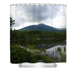 Lonesome Pine At Sandy Stream Pond Shower Curtain
