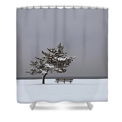 Lonesome Winter Shower Curtain by Karol Livote