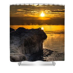 Long Cold Winter Shower Curtain by James  Meyer