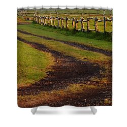 Long Dirt Road Shower Curtain