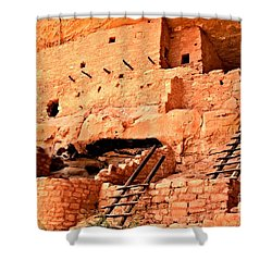 Long House Ladders Shower Curtain