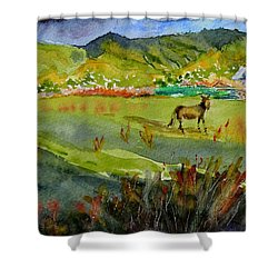 Long Shadow Storm Shower Curtain by Beverley Harper Tinsley