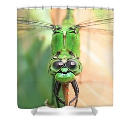Long Time No See Shower Curtain by Carol Groenen