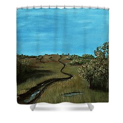 Long Trail Shower Curtain by Anastasiya Malakhova