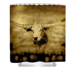 Longhorn Bull Shower Curtain