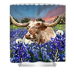 Longhorn In Bluebonnets Shower Curtain by Tim Gilliland
