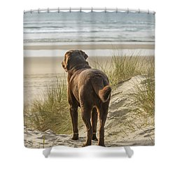 Longing Shower Curtain by Jean Noren