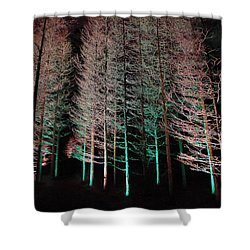 Longwood Gardens - Tree Stand At Night Shower Curtain