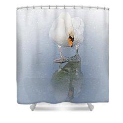 Look Alike Shower Curtain