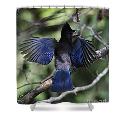 Look At My Wings Shower Curtain by Alyce Taylor