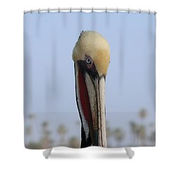 Look Into My Eye  Shower Curtain