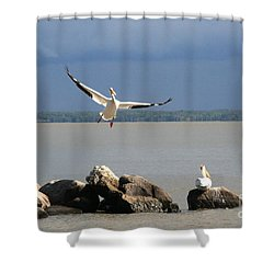 Look Ma - I Can Fly Shower Curtain by Mary Mikawoz