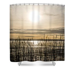 Looking At Wales Through The Grass Shower Curtain