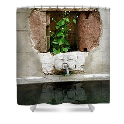 Looking Deeper Shower Curtain by Lainie Wrightson