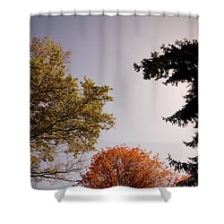 Shower Curtain featuring the photograph Looking Down On Us by Photographic Arts And Design Studio