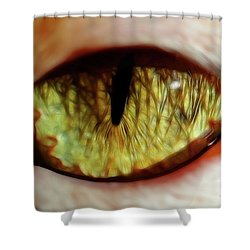 Looking Into The Soul Shower Curtain by Mariola Bitner