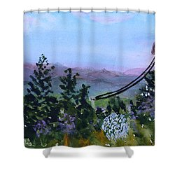 Shower Curtain featuring the painting Looking Out From Top Of Jay Peak  by Donna Walsh