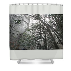 Shower Curtain featuring the photograph Looking Out My Backdoor by Brooks Garten Hauschild