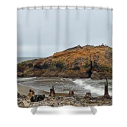 Looking Out On The Pacific Ocean From The Sutro Bath Ruins In San Francisco  Shower Curtain by Jim Fitzpatrick