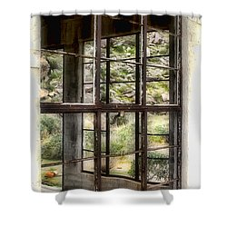 Looking Through The Window By Diana Sainz Shower Curtain
