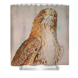 Looking Toward The Future Shower Curtain