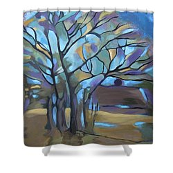 Looks Like Mondrian's Tree Shower Curtain