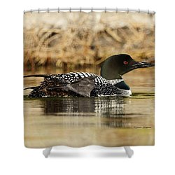Loon 10 Shower Curtain