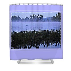 Shower Curtain featuring the photograph Loon On A Misty Morning At Parker by Joy Nichols