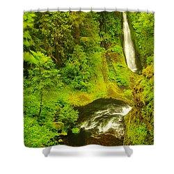 Loowit Falls Shower Curtain by Jeff Swan